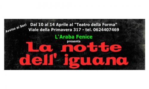 """Al Teatro della Forma di Roma """"La notte dell'iguana"""""""