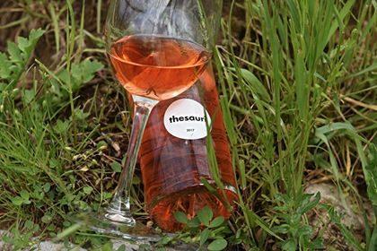 Domenica 26 maggio la presentazione di Cantina Tagliafierro e dei suoi vini di Tramonti