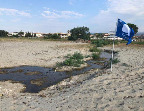 La protesta. A Sellia Marina (CZ) un imprenditore issa la Bandiera Blu su un cumulo di rifiuti