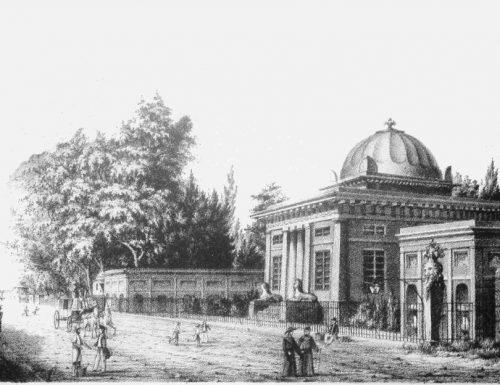 L'orto botanico di Palermo, un'oasi romantica tropicale