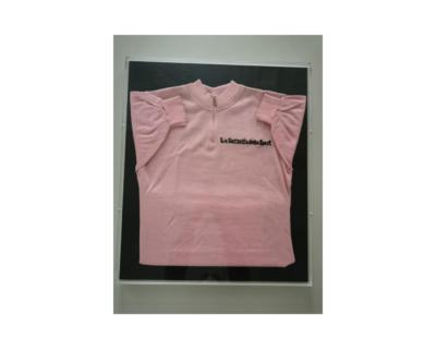 Il Museo Egizio di Torino festeggia il Giro d'Italia e la sua Maglia Rosa