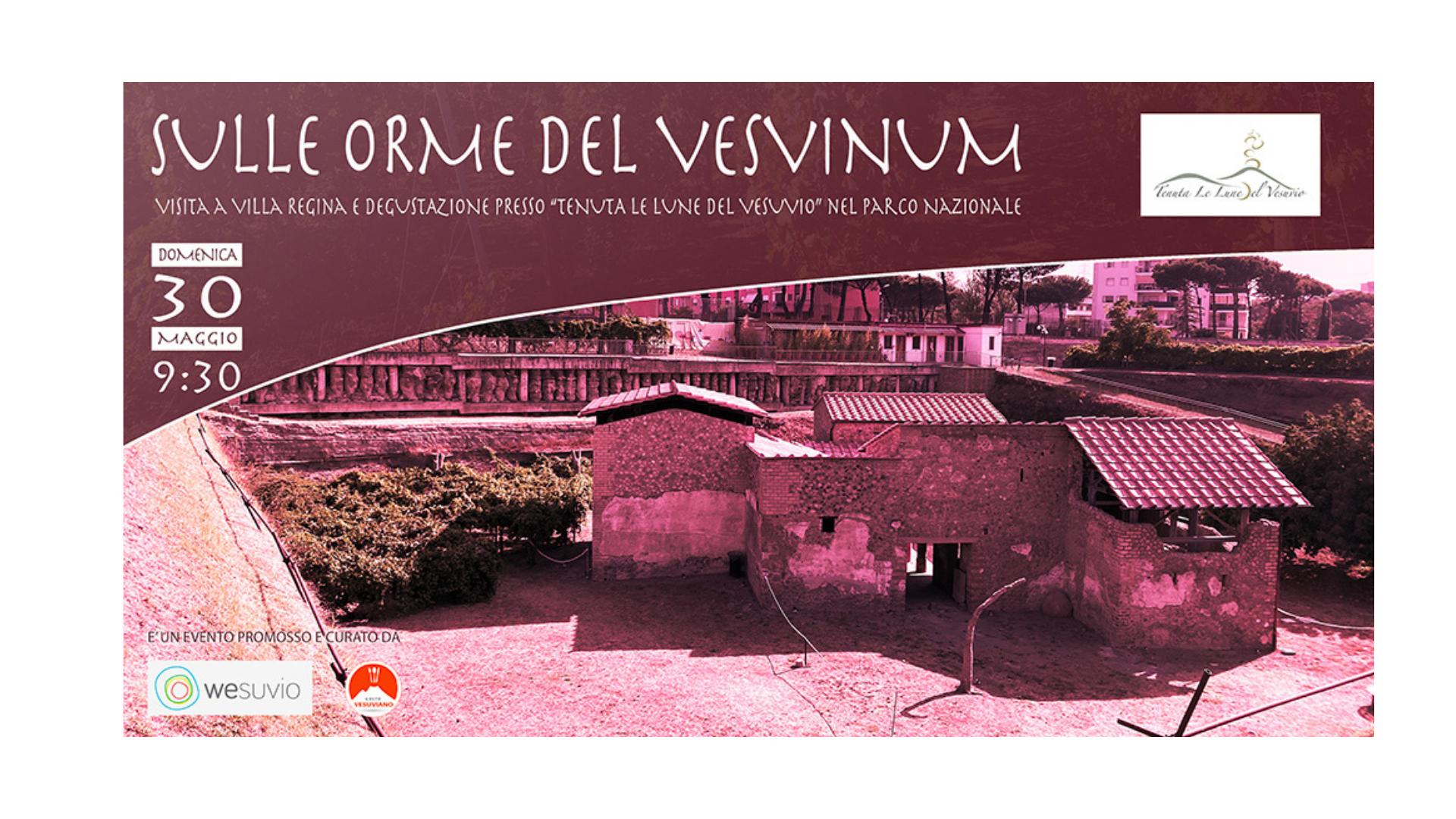 """""""Sulle orme del Vesvinum"""""""